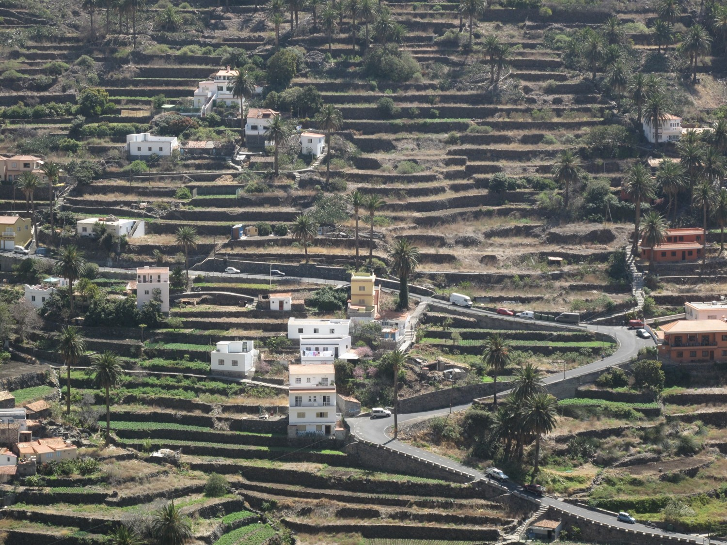 Agricultural terraces Canary Islands